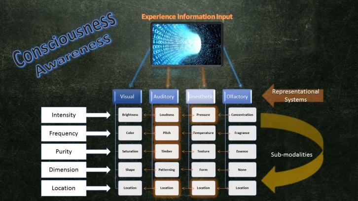 Consciousness Model